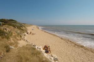 plage ré